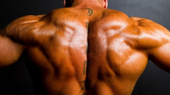 How to get a wider back